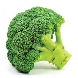 Brócoli (u.)