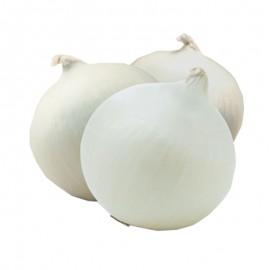 Cebolla Perla (u.)